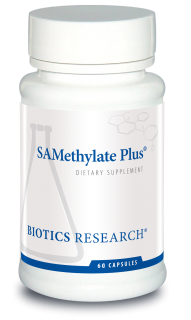 SAMethylate Plus™
